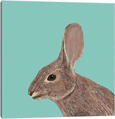 Bunny Canvas Print #PET19