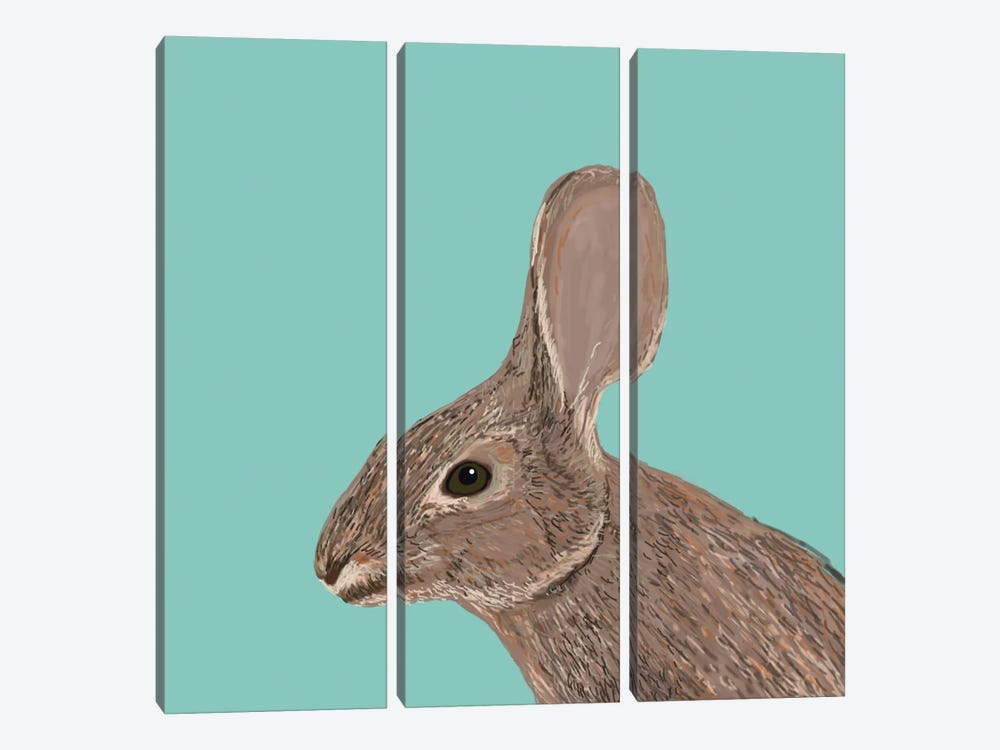 Bunny by Pet Friendly 3-piece Canvas Wall Art