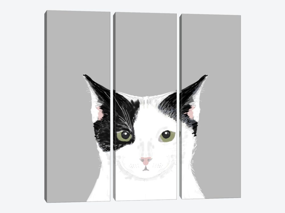 Cat (Black & White) by Pet Friendly 3-piece Canvas Wall Art
