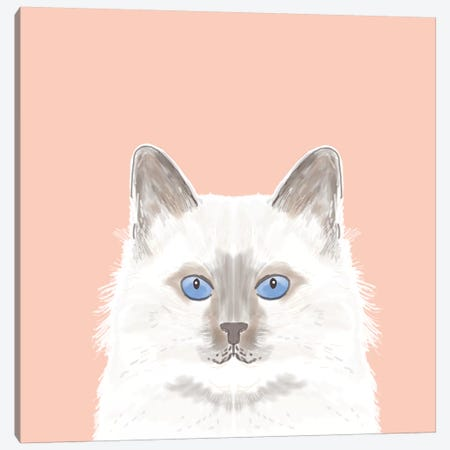 Cat (White) Canvas Print #PET22} by Pet Friendly Canvas Print
