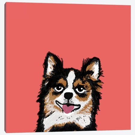 Chihuahua (Long-Haired) Canvas Print #PET23} by Pet Friendly Canvas Art Print