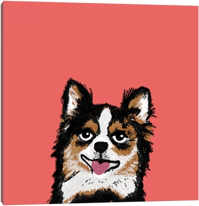 Chihuahua (Long-Haired) Canvas Art Print