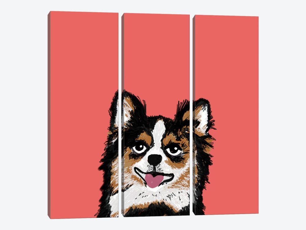 Chihuahua (Long-Haired) by Pet Friendly 3-piece Canvas Art Print