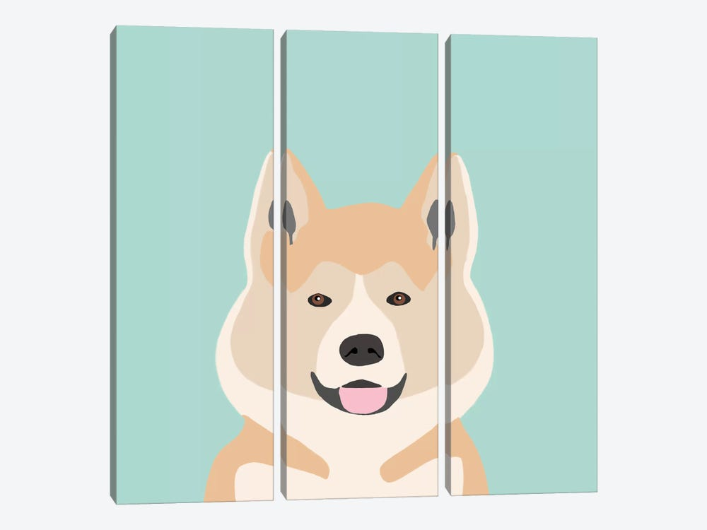 Akita by Pet Friendly 3-piece Canvas Art Print