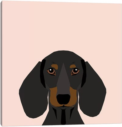 Dachshund I Canvas Art Print