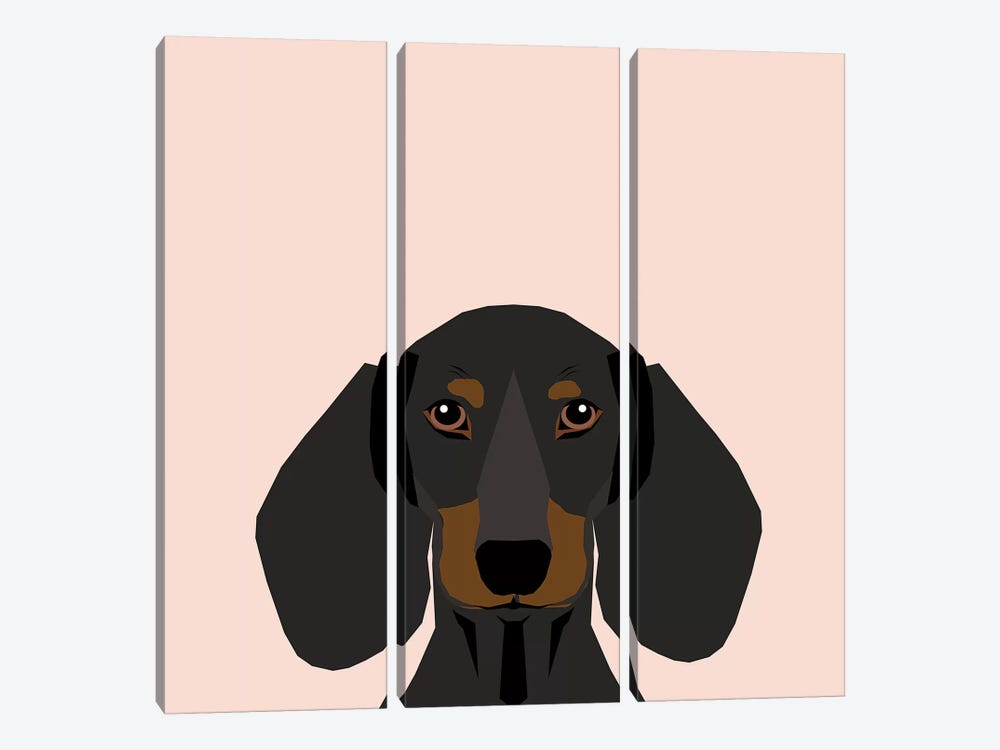 Dachshund I by Pet Friendly 3-piece Canvas Art