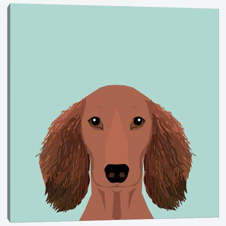Dachshund II Canvas Print #PET32} by Pet Friendly Canvas Artwork