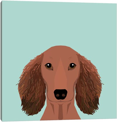 Dachshund II Canvas Art Print
