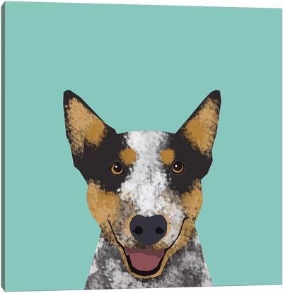Australian Cattle Dog Canvas Print #PET3