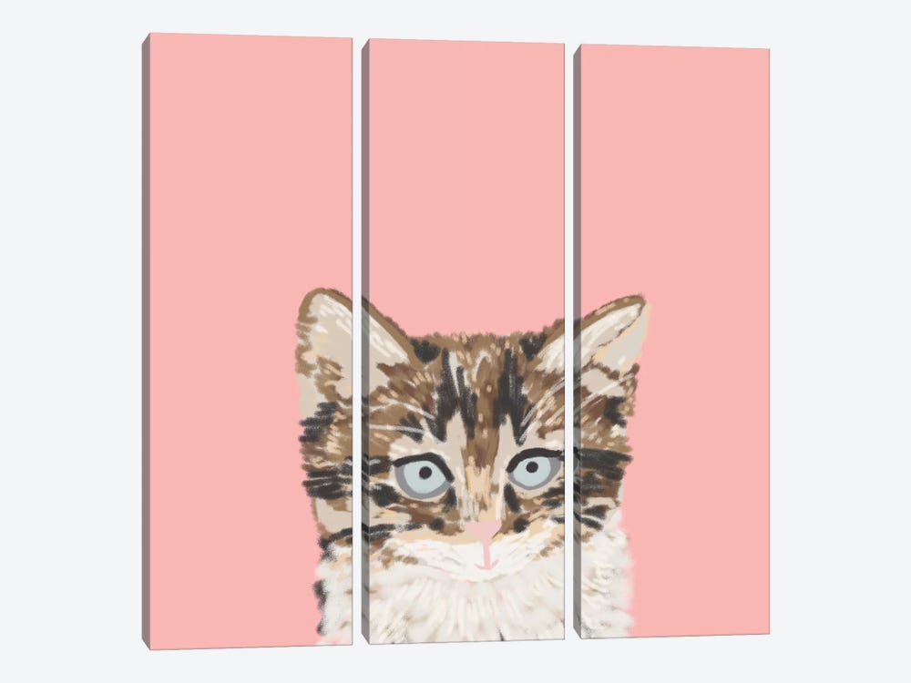 Kitten by Pet Friendly 3-piece Art Print