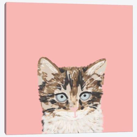 Kitten Canvas Print #PET50} by Pet Friendly Canvas Art