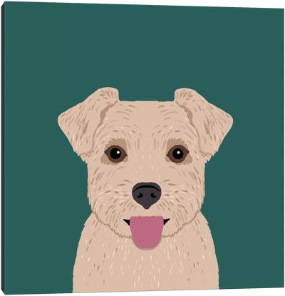 Norfolk Terrier Canvas Art Print