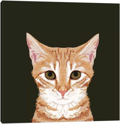 OrangeTabby Canvas Print #PET54
