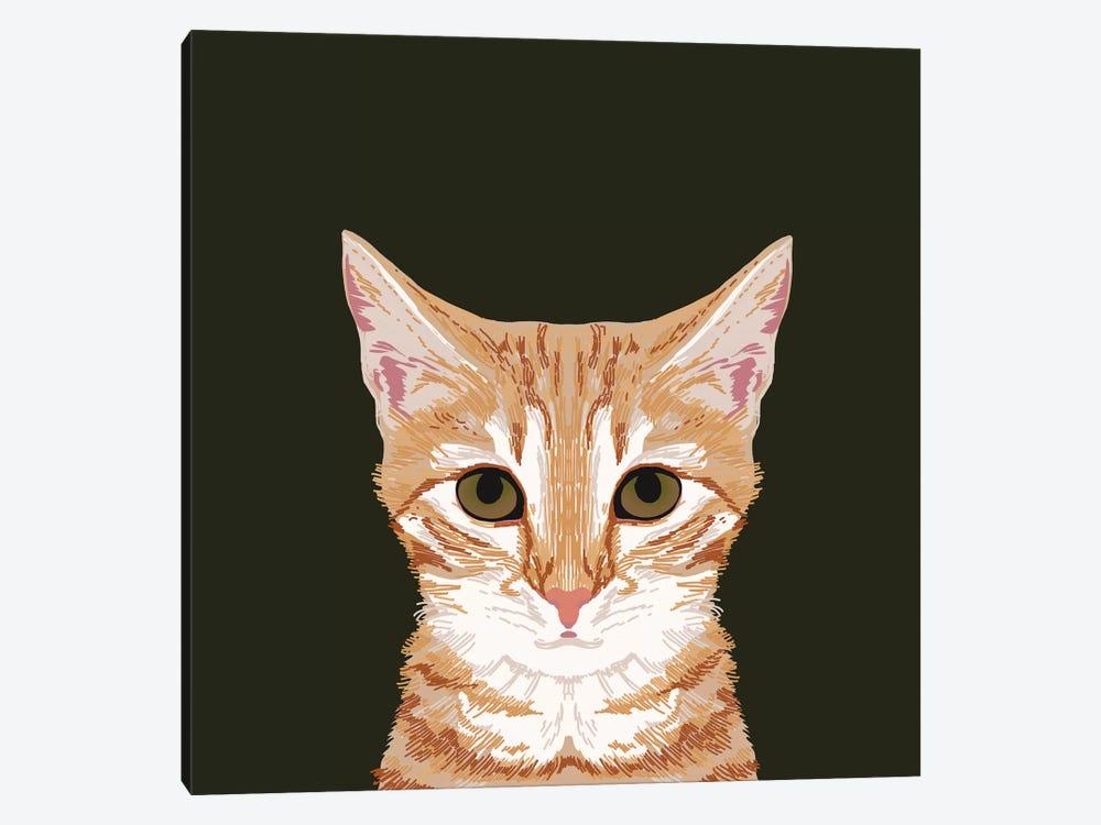 OrangeTabby by Pet Friendly 1-piece Canvas Print