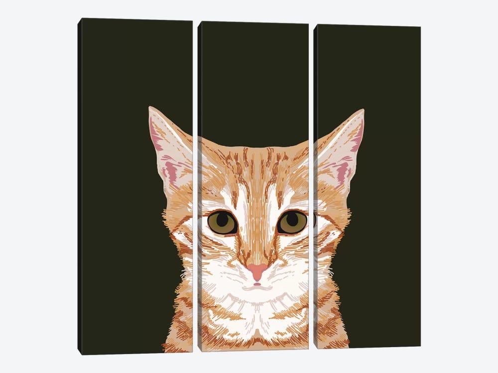 OrangeTabby by Pet Friendly 3-piece Canvas Print