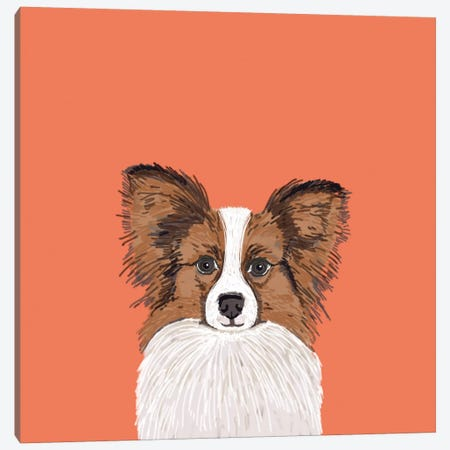 Papillon (Continental Toy Spaniel) Canvas Print #PET55} by Pet Friendly Art Print