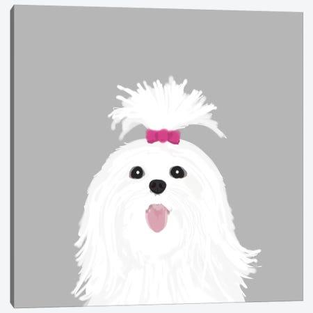 Shih Tzu Canvas Print #PET65} by Pet Friendly Canvas Art