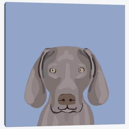 Weimaraner Canvas Print #PET68} by Pet Friendly Canvas Art Print