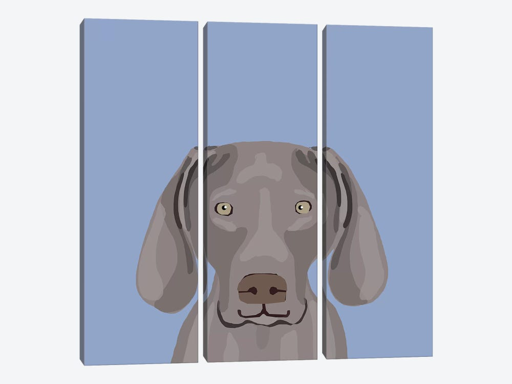 Weimaraner by Pet Friendly 3-piece Canvas Wall Art