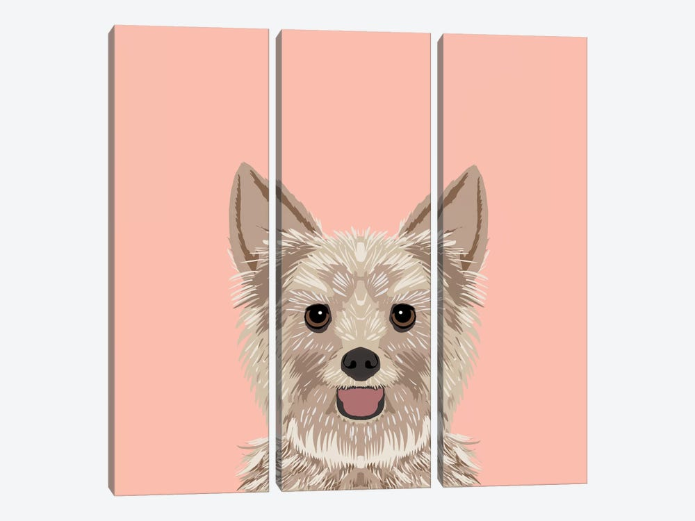Yorkshire Terrier by Pet Friendly 3-piece Art Print