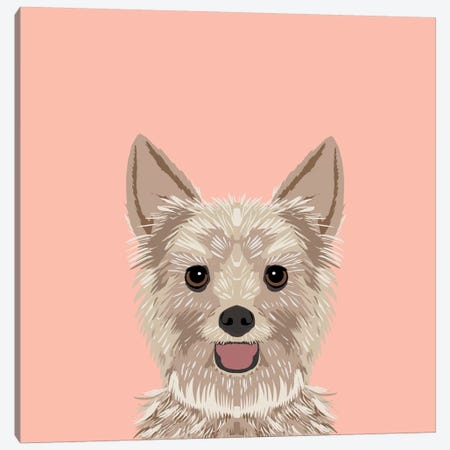 Yorkshire Terrier Canvas Print #PET69} by Pet Friendly Art Print