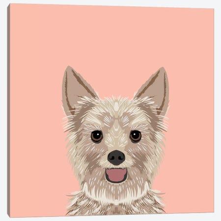 Yorkshire Terrier Canvas Print #PET69} by Pet Friendly Art Print