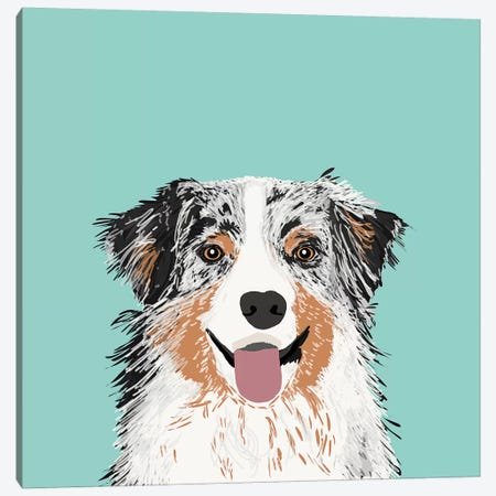 Australian Shepherd II Canvas Print #PET6} by Pet Friendly Art Print