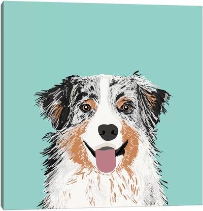 Australian Shepherd II Canvas Print #PET6