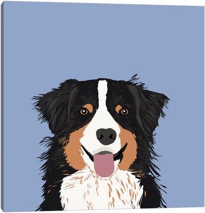Australian Shepherd III Canvas Print #PET7