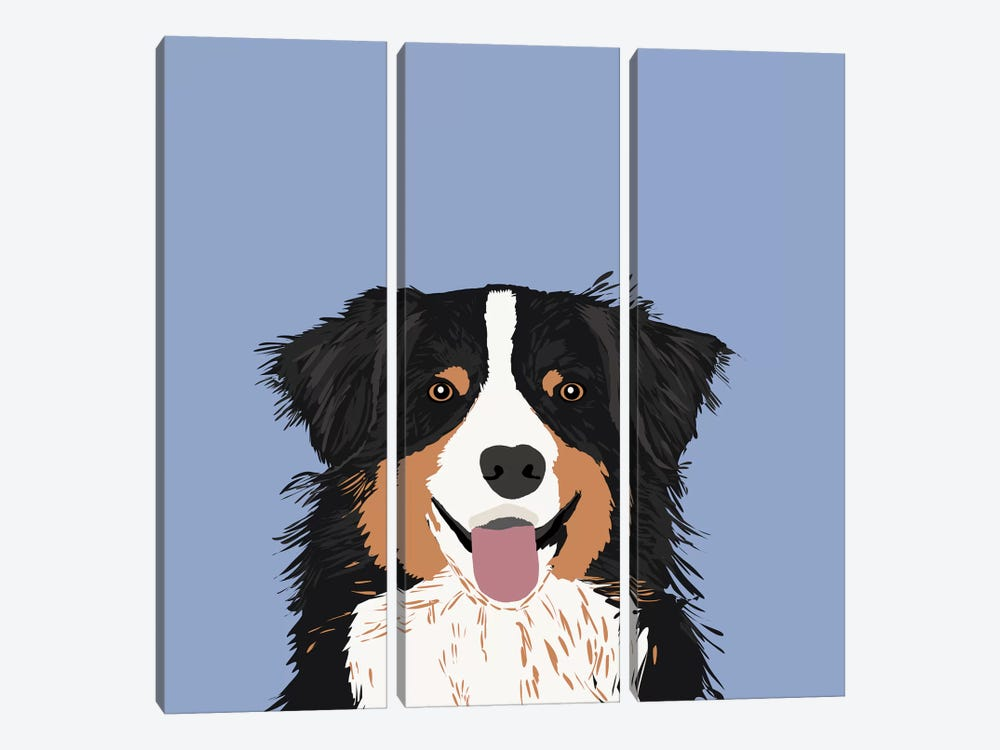 Australian Shepherd III by Pet Friendly 3-piece Canvas Artwork