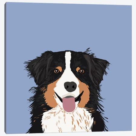 Australian Shepherd III Canvas Print #PET7} by Pet Friendly Canvas Art Print