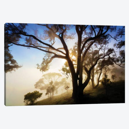 Morning Is Breaking Canvas Print #PEW101} by Peter Walton Art Print