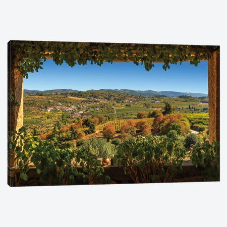 Douro Valley Vineyards Canvas Print #PEW130} by Peter Walton Canvas Wall Art