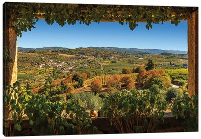 Douro Valley Vineyards Canvas Art Print