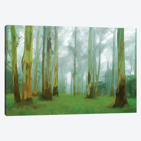 Misty Forest Canvas Print #PEW136} by Peter Walton Canvas Print