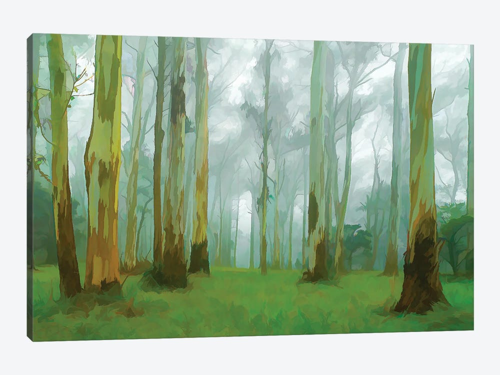Misty Forest by Peter Walton 1-piece Canvas Wall Art