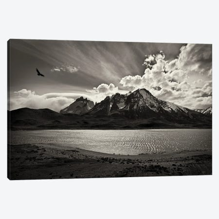 Condor Over The Andes Canvas Print #PEW13} by Peter Walton Canvas Print