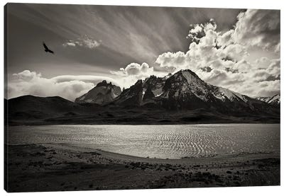 Condor Over The Andes Canvas Art Print