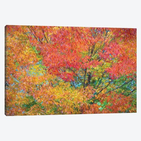 Autumn in Japan Canvas Print #PEW148} by Peter Walton Canvas Print