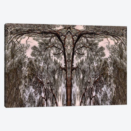 Dancing Tree Canvas Print #PEW14} by Peter Walton Canvas Wall Art