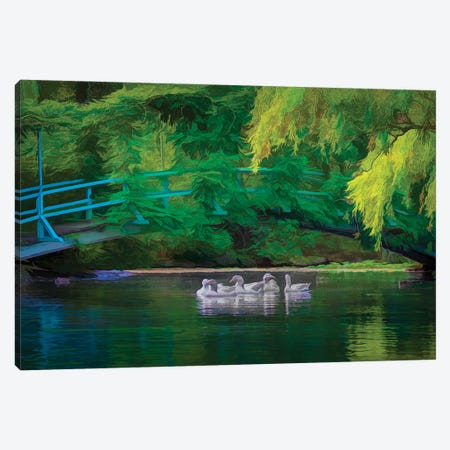 Duckpond Canvas Print #PEW169} by Peter Walton Canvas Art Print