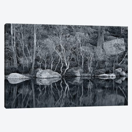 Lake Catani Reflections Canvas Print #PEW172} by Peter Walton Canvas Wall Art