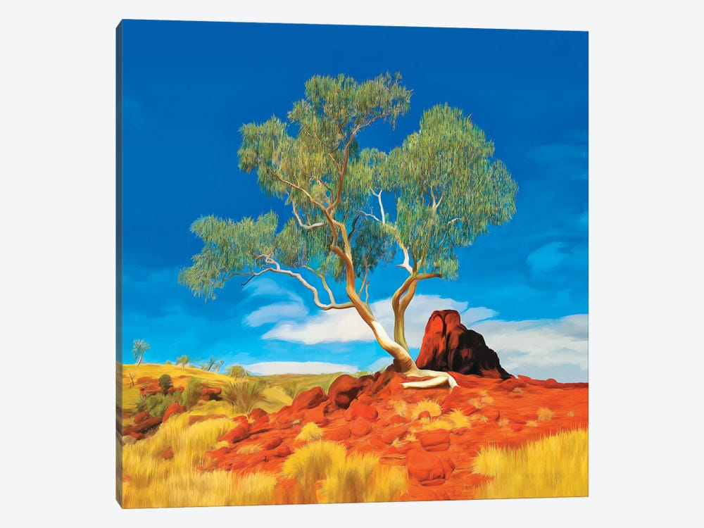 Pilbara Gum Tree by Peter Walton 1-piece Canvas Art Print