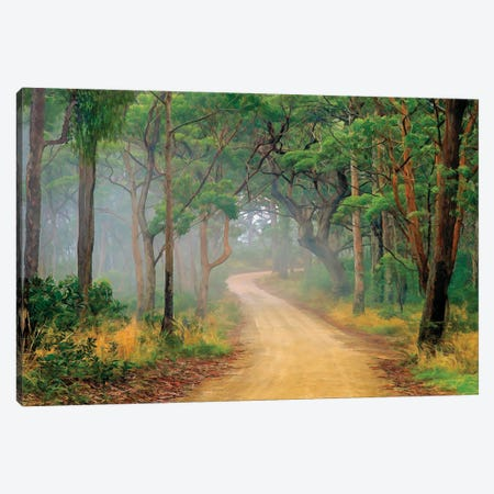 Misty Bush Book Canvas Print #PEW188} by Peter Walton Canvas Print
