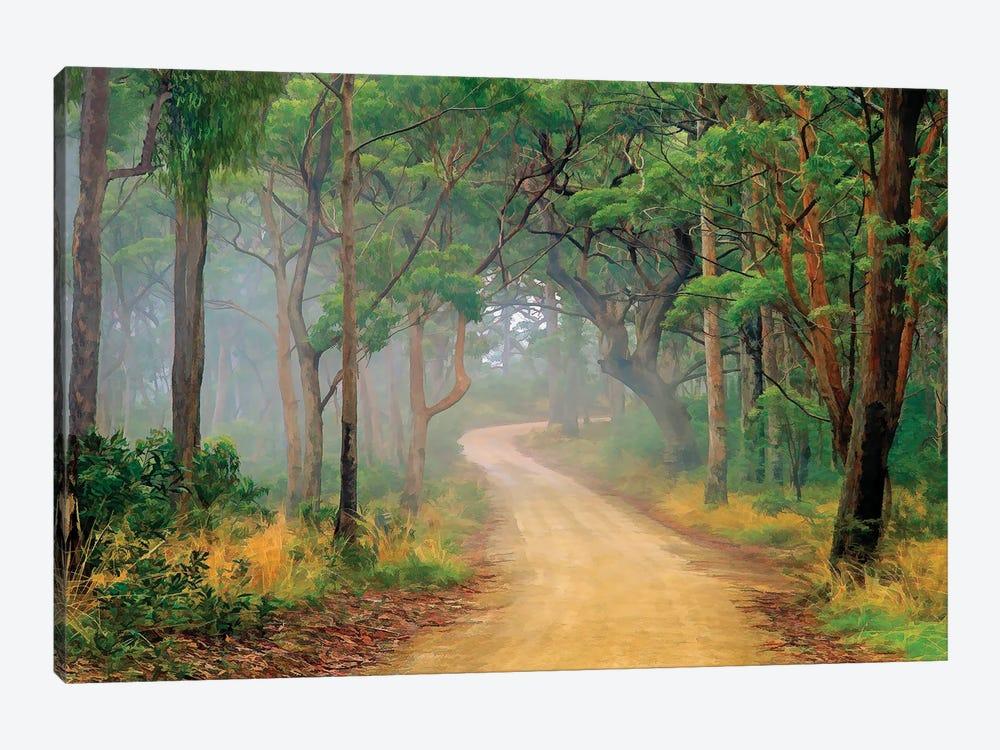 Misty Bush Book by Peter Walton 1-piece Canvas Art Print