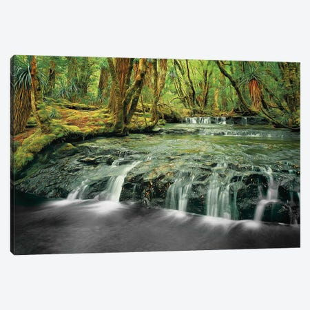 Pine Valley Waterfalls Canvas Print #PEW202} by Peter Walton Canvas Art