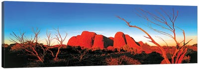 The Olgas Canvas Art Print