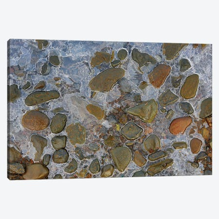 Iced In Rocks Canvas Print #PEW39} by Peter Walton Canvas Art Print