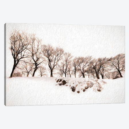 Onset Of Winter Canvas Print #PEW57} by Peter Walton Canvas Artwork