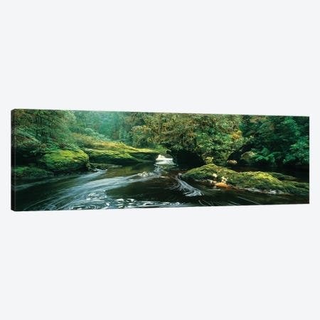 Bird River Panorama Canvas Print #PEW6} by Peter Walton Canvas Wall Art